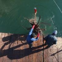 Makedonie – montážní a potápěčské práce na několika vodních elektrárnách